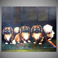 1950 Pekingese Dogs Oil Painting.
