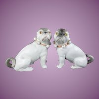 """Magnificent Antique Conte & Bohn Porcelain Pugs """"R A R E  COLOR"""""""
