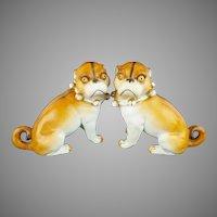"Antique  PUGS from Conte & Boehn  'RARE PAIR  w White Bows"""