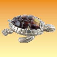 Antique Turtle Silver Match Safe