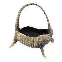 Rare Armadillo Basket