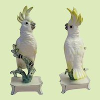 """Nymphenburg Porcelain """"Yellow"""" Cockatoo ~ Signed Nymphenburg Trademark in Green and Impressed w Crest  # 677"""