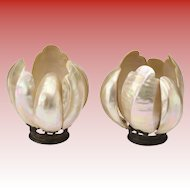 Magnificent Mother of Pearl Lamp Flower Shades ~ An Exquisite PAIR ~RARE and Very Special ~ Each Lamp Shade has Six Large and Curved Shells