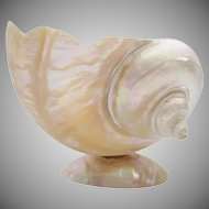 Antique Giant Mother of Pearl Shell Bowl ~ Luminous and Glowing with Color ~ Beautiful Size!