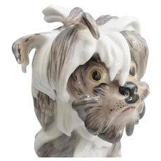 Precious Antique Porcelain Shaggy  Dog ~ He is a Prize ~ His Eyes are Priceless