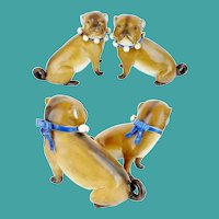 PAIR of Antique PUGS from Conte & Boehm with Blue Collars