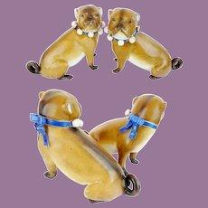 PAIR of Antique German  PUGS w Blue Collars