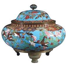 """Antique 12 ½"""" Chinese Cloisonné Covered Box """"BIRDS & FLORAS"""" A Cloisonné Masterpiece"""