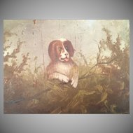 "19C American School Folk Art ""DOG"" Oil Painting ~ Painted on a Poplar Panel"