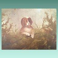 "19C American School Folk Art ""DOG"" Oil Painting ~ Painted on a Poplar Pane l~  Original Molded-Composition Frame"