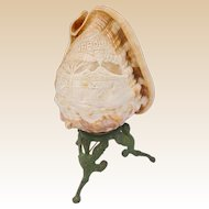 Antique Carved Shell Lamp ~  Beautiful Carved Shell with Three Painted Figural Metal Feet ~ Good Wiring