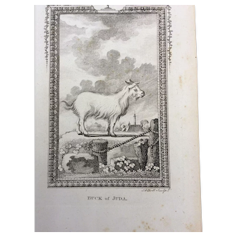Goat Engraving --- late 19th Century Bookplate