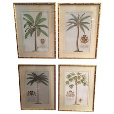 A Set of 4 English framed Botanical Prints.