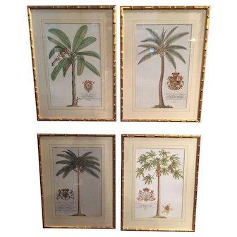 A Set of 4 English framed Botanical Prints.