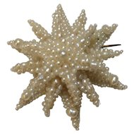 Natural Pearl Starburst Pin Circa 1840