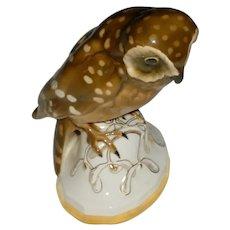 Original Signed 1920s / 1930s Modern German Art Porcelain Spotted Owl Sculpture Figurine Designed by Professor Fritz Klee for Hutschenreuther!