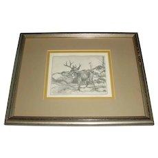 Framed Original Signed Tom Sander Modern Western Wildlife Art Etching w/ 8-Point Buck Deer Kalispell, Montana Artist!