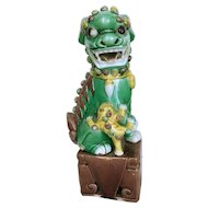 Lone Female with Baby Foo Dog