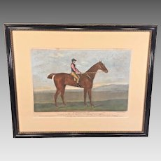 Hambletonian Horse Hand Colored Engraving after John Nost Sartorius Framed