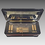 Vintage Reuge Music Box 5 Interchangeable Pin Cylinders Mirrored Song Sheet Beautiful Case