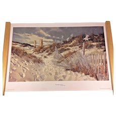 Vintage Carolyn Blish Limited Edition Print # 117/650 Henlopen Towers 2004