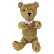 Small Old Teddy Bear. Shoe Button Eyes. Straw Filled.