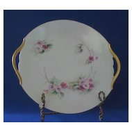 Tressemanes & Vogt Hand Decorated Pierced Handle Plate