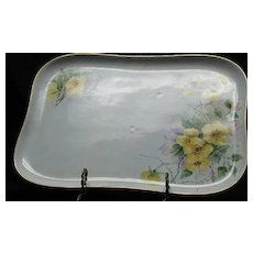 Limoges Hand Painted Dresser Tray