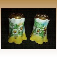 Beautiful Daisies Shakers