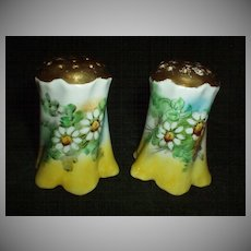 Beautiful Daisies Shakers