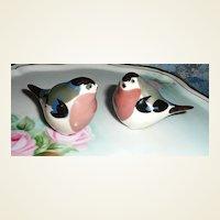 Lomonosov Russian Porcelain Birds