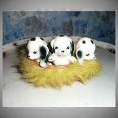 Vintage Dalmatians Puppies in  Fur Basket