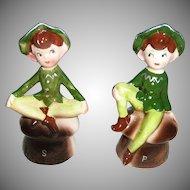 Enesco Set of  Green Pixie Elf Shakers