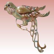 Huge Vintage Parrot Brooch Pastel Enamel Faux Pearl & Rhinestone