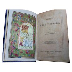 """Spring Wildflowers"" 1845 Scottish Poetry Antique Book Poems William D'Leina Spring Poetry"