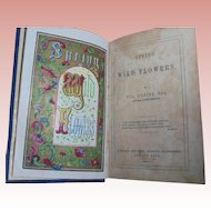 """""""Spring Wildflowers"""" 1845 Scottish Poetry Antique Book Poems William D'Leina Spring Poetry"""