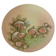 China Painted Plate with Mushrooms
