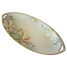 Noritake Nippon Celery Dish Circa 1910-1921, Hand Painted with Leaves and Blossoms