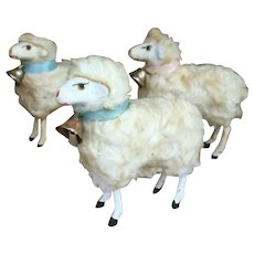 3 Old German Sheep With Bell
