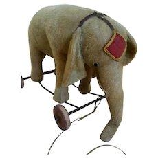 Antique Elephant On Wheels 1910/1920
