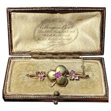 Edwardian 15K Gold Ruby and Diamond Clover Shamrock Locket Pin, Brooch