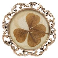 Antique Real Four Leaf Clover 14K Gold Frame Brooch Pin