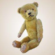 A lovely German 1920s teddy bear,
