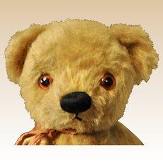 A adorable Chad Valley teddy bear, 1940/50s