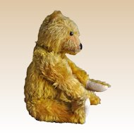 Fine and interesting early German teddy bear, 1910s, early 1920s
