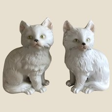 A rare pair of Gebruder Heubach white Persian kittens,