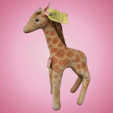 A good example of a post-war velvet Steiff giraffe 6414,00