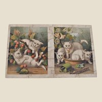 A lovely Nelson & Sons The Three White Kittens wooden dissected puzzle,