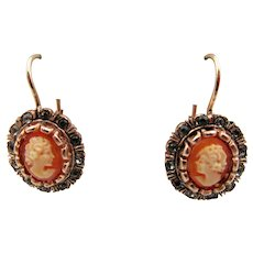 Italian Cameo Rose Gold Plated Pierced Earrings