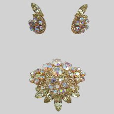 DeLizza & Elster Juliana Aurora Borealis Brooch and Clip Earrings